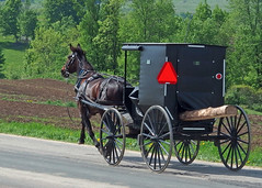 Have Log, Will Travel (DewCon) Tags: amish horseandbuggy