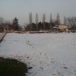 Slike -Šnk Dunav 014