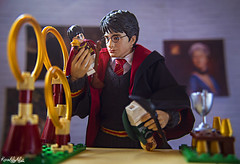 IMG_5414 (Karen May Martin) Tags: harry potter star ace toy photography stuck plastic hogwarts gryffindor one sixth figure