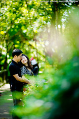 Phu Ping Palace Chiang Mai Thailand Wedding Photography (NET-Photography | Thailand Photographer) Tags: 200 2013 85mm 85mmf14 phupingpalace camera chiangmai couple d3s engagement engagementsession f14 iso iso200 love nature netphotographer netphotography nikon outdoor palace prewedding prenup prenuptial th tha thailand webblog พระตำหนักภูพิงคราชนิเวศน์ photographer photography professional service wedding documentary honeymoon session best postwedding asia asian destination popular thai local