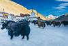 DSC07472 (chyen01) Tags: tibet rongbuk monsatery landscape sony fe21 fe2128 a7 a7ii everest