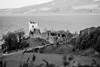 Urquhart Castle, Drumnadrochit, Scotland (Lucia001) Tags: ruins castle scottishcastle historicscotland landscape scottishlandscape scottish scotland drumnadrochit lochness urquhartcastle