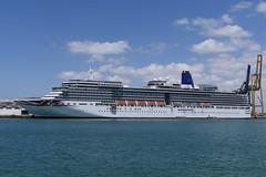 Cadiz (neuseeland201111) Tags: puerto hafen kreuzfahrt cruise ship schiff arcadia cadiz spanien andalusien