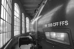 brig #50 (train_spotting) Tags: brig briga brigue valais wallis sbbcffffs sbb re4600284 seetal slm abb nikond7100
