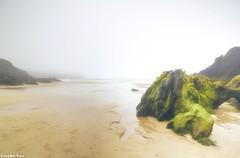 Foggy (gusdiaz) Tags: coumeenoole beach ireland fog foggy niebla neblina playa ocean mar oceano rocas rocks canon canonphotography nature naturephotography