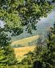 Incoming summer (giorgiorodano46) Tags: giugno2018 june 2018 giorgiorodano nikon norcia estate summer été campagna countryside italy meadows campi champs
