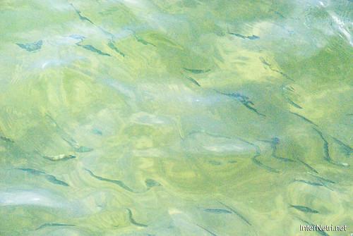 Шацький Національний Природний Парк Озеро Пісочне Прозора вода InterNetri  Ukraine 276