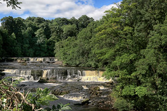 Aysgarth Falls, Yorkshire Dales (crafty1tutu (Ann)) Tags: travel holiday 2017 unitedkingdom uk england yorkshire yorkshiredales waterfall aysgarthfalls scenery landscape crafty1tutu canon7dmkii canon24105lserieslens anncameron sky forest tree wood grass river naturescarousel coth coth5