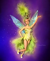 Happy 50th birthday, Kylie Minogue! (AaronMalibu) Tags: pixie fairy tinkerbell peterpan doll mattel barbie jakkspacific disney