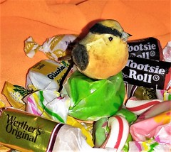"""Nest of assorted Candies, how sweet   """"Macro Mondays"""" (marieschubert1) Tags: nest bird sweets bonbons """"macro mondays"""""""