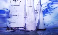 Regata (Luc1659) Tags: regata mare barche nuvole sea vele blu clouds sailboats