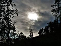 Light (Tobymeg) Tags: scotland sky light cloud trees forest panasonic dmcfz72 dark hole
