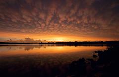 Apocalyptic Sunset (Tiara Rae Photography) Tags: mammatus clouds nature storms thunderstorms weather meteorology sky sunset lake reflection red orange yellow rocks nebraska zorinsky
