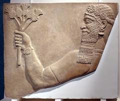 L1070759 (H Sinica) Tags: hongkonghistorymuseum britishmuseum assyrian cyprus relief nimrud