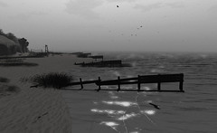 """The salt of every lazy wave seeps slowly through my skin just to intensify the ache."" (A Lone) Tags: second life secondlife sl virtual dark light shadow art firestorm gimp photography windlight photo sim 3d nature landscape scenery beauty romance serene monochrome blackwhite grey ocean water sea beach seagulls"