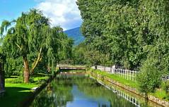 Reflets dans la Venoge (Diegojack) Tags: lisle vaud suisse d7200 paysages plandeau rivière venoge reflets miroir douceur calme