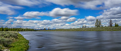 Yellowstone National Park (adamthehippo) Tags: yellowstone sony wyoming usa 2018 river trees nature national park wide sky clouds blue