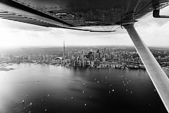 Taking It In (BW) (Michael Muraz) Tags: 2018 bw blackwhite canada northamerica ontario toronto world aerial aerialphotography lake lakeontario monochrome plane skyline ca