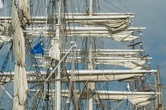 Rather busy (ColmDub) Tags: masts tallships dublin sails