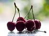 die ersten hiesigen Kirschen sind da... (somareja*pictures) Tags: ciliegile cherries cerises bokehbild sommerfrüchte highkey wassertropfen früchte kirschen macrodreams macro olympusem10 olympusdigitalcamera flickr markusreber somarejapictures