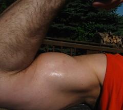 BIG BULGING BICEPS (FLEX ROGERS) Tags: biceps muscle muscular big huge welldeveloped wellbuilt bigguns ripped chest pecs abs flex flexing workout lats traps 18inch musclemodel muscleart bicepart