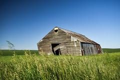 Not Long (cutthroatsrule) Tags: barn montana decay abandoned prairie green