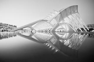 Pez abisal monocromo (Monochrome Abyssal Fish)