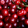 Freshly picked (Oxford Murray) Tags: slovakia piestany freshfood natural fresh homegrown cherries
