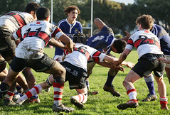 Scots vs St Pat's Town 2018 (whitebear100) Tags: scotscollege wellington theweltecpremiership stpatstown rugby rugbyunion nz newzealand 2018
