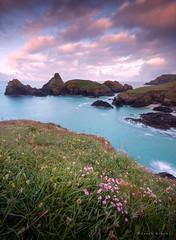 Cornish Spring (Sarah_Brooks) Tags: seascape kernow cornwall kynancecove cornish wildflowers seathrift rocks morning sunrise