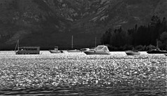 Jackson Lake (lotosleo) Tags: jacksonlake leeksmarina mountainside teton wyoming wy rockymountains travel crossamerica2015 outdoor water landscape bw blackandwhite monochrome