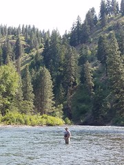 20180605_162610 (Red's Fly Shop) Tags: naches river wading wadefishing