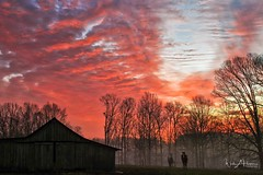 Sunrise over the Barn & Horses (Catch the Moment Photography) Tags: landscapephotography sunrise barn horses trees pasture sky wadehooperphotography canon7d clouds morning redsky tennessee fog silhouette layers dawn photo
