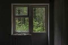 (Khuroshvili Ilya) Tags: abandoned window forest trees door broken nature nobody volka konakovo