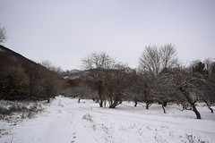 Neu a Santa Fe (Hachimaki123) Tags: paisaje landscape montseny parcnaturaldelmontseny santafe santafedelmontseny neu nieve snow