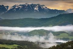 Layer upon layer... (dejongbram) Tags: france clelles landscape fog mist mountain sunrise travel isère forest tripadvisor nikon d500 beautifullight