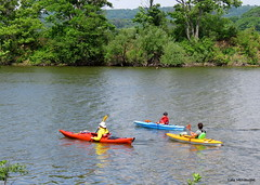 Colourful Kayaks (Lois McNaught) Tags: kayak boat colourful scene landscape princesspoint cootesparadise hamilton ontario canada nature water