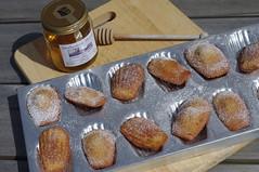 Madeleine cakes (Blue Sky Pix) Tags: baking madeleine cakes delicious tasty sweettreats garden homemade derbyshire honeypot england yummy lovetobake