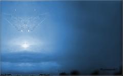 papillon de lumière... (Fotomaniak 53) Tags: orage éclair flash symétrie corel paint shop pro montage bleu papillon lumière original canon 550d digital eos raw lightning groupenuagesetciel