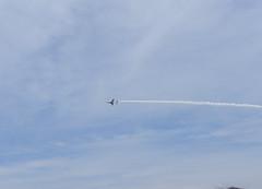 DSC08532 (kagawa_ymg) Tags: 航空祭 ブルーインパルス blueimpulse