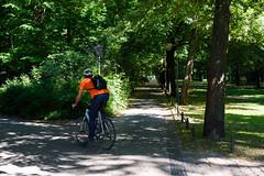 Im Tiergarten in Berlin (Professor Besserwisser) Tags: berlin tiergarten fahrradfahrer stadtpark cyclist berlín berlim berlino