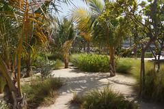 2018-06-FL-191143 (acme london) Tags: 2018 antoniocitterio beachvilla bulgari dubai hotel hotelresort hotelvilla meraas resortvilla uae villa