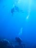 IMG_0006 (stevefenech) Tags: south pacific islands travel adventure stephen steve fenech fennock micronesia pohnpei kolonia under underwater diving scuba