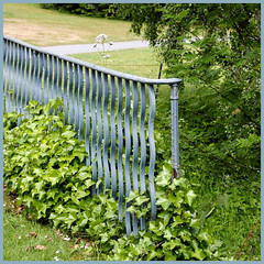 iron railing of a bridge (Jocawe) Tags: lumixdmclx100 square availablelight bridge railing iron