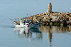Bringing in the catch (George Plakides) Tags: fishingboat fishermen port sea psarolimano dhekelia swallows birds lighthouse rocks