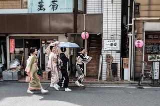 Tokyo Geisha Strolling