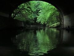 The Amazing Bronx River Flotilla #9 (Keith Michael NYC (4 Million+ Views)) Tags: thebronx newyorkcity newyork ny nyc bronxriver theamazaingbronxriverflotilla bronxriveralliance
