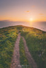 Vintage path (Mimadeo) Tags: path way trail nature outdoor landscape beautiful light footpath walk pathway countryside sun vintage retro filter effect instagram sea coast grass sunset