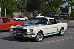 Early Rodders 5-26-18 (USautos98) Tags: shelby gt350