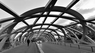 Pont Hans-Wilsdorf, Genève-Suisse
